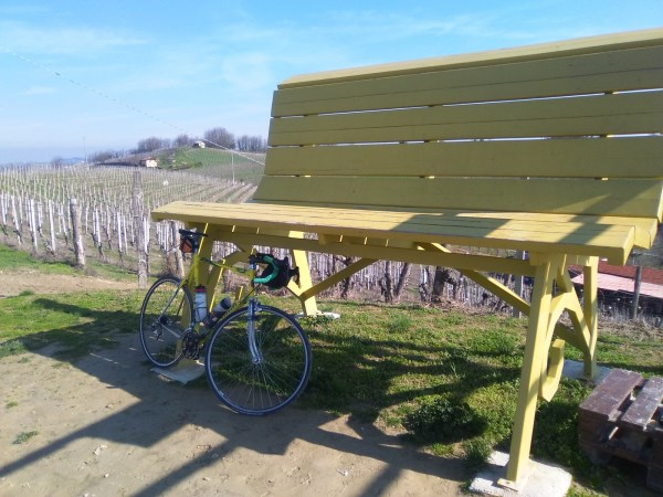 Big Bench 21 Strevi Giallo Moscato